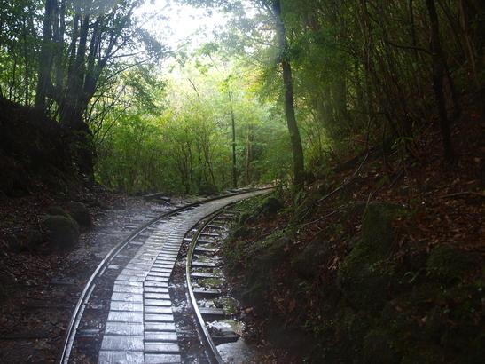 最後の森林軌道