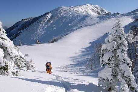 徳島の雪山