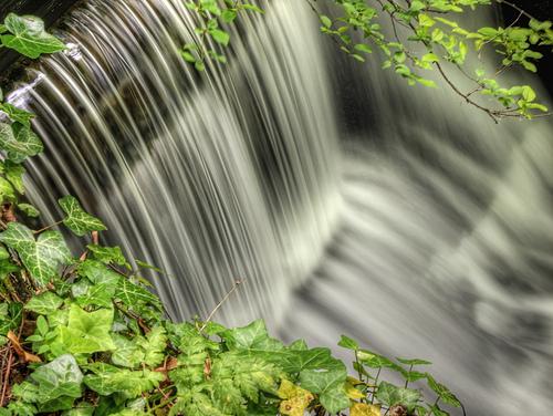 山の水を味わうのもまた楽し