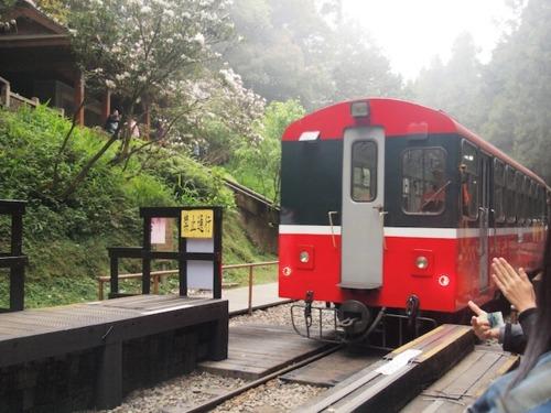 阿里山の遊歩道へは鉄道で。