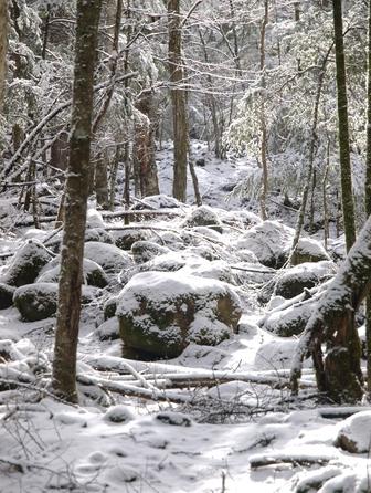 南アルプスは仙丈ヶ岳と甲斐駒ヶ岳・北沢峠へ!